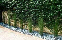 contemporary landscape garden decorating ideas horsetail reed garden path