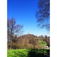 Bild geknipst von @mathlee Super Bild    © -> @mathlee on Instagram Weblink https://instagram.com/p/1p-v75DxpE     #zurich #switzerland #swiss #zürich #guesthouse #ferienwohnung #fewo #ferienhaus #basel #bern #genf #hoildays #ferien #uetliberg #topofzurich #züriberg #zürichberg #suisse #svizzera