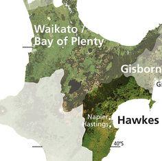 Hawkes Bay Wine Region - Image Courtesy of New Zealand Wine Institute