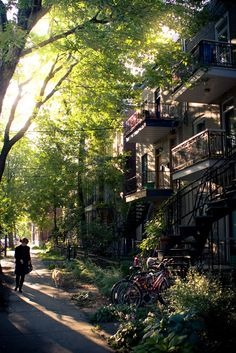 Montreal Rowhouses, Canada