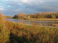 Fotó: Mórocz Attila Country Roads, River, Outdoor, Outdoors, Outdoor Games, The Great Outdoors, Rivers