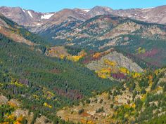 Mineral Mountain Trail: 10.6 miles, Eldora, CO