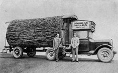 This is an incredible tree trunk tiny house on wheels created before chainsaws existed! Tiny House Talk reader, Kerry, shared some great pictures and commentary with us about this incredible & Vintage Trailers, Vintage Trucks, Logging Equipment, Camping Equipment, Mobile Home Living, Rv Living, Tiny Living, Douglas Fir, Douglas County