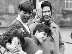 April 1973 ~ Britain's Prince Andrew, left, and his cousin, Viscount Linley, romp with hounds of the Duke of Bedford as Queen Elizabeth II looks on. Hm The Queen, Her Majesty The Queen, Save The Queen, Duchess Of York, Duke Of York, Elizabeth Philip, Queen Elizabeth Ii, Queen Victoria Descendants, Princess Eugenie And Beatrice
