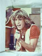 Andy Gibb.... still have a crush.