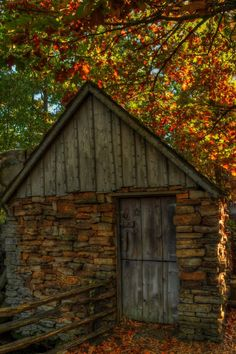 Shed in autumn