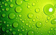 Risultati immagini per immagini con colore dominante verde