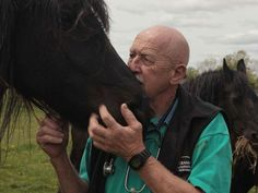 'The Incredible Dr. Pol' on Nat Geo Wild. He is absolutely amazing and an idol of mine. He works with Farm animals and all sorts of different species around where he lives servicing about 19,000 clients. http://animals.nationalgeographic.com/animals/wild/shows-incredible-dr-pol/