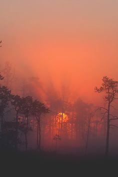 Kindergarten and Mooneyisms: 5 Minute Science Lesson - sunset/sunrise Beautiful Sunset, Beautiful World, Beautiful Places, Amazing Photography, Landscape Photography, Nature Photography, Cool Pictures, Beautiful Pictures, Forest Pictures