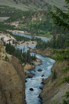 Yellowstone National Park 2010