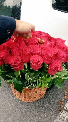 Na dostavi - Košarica 50 ruža, za rođendan.