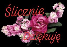 Podziękowania Sister Quotes, Geek Stuff, Happy Birthday, Humor, Sisters, Polish, Bedroom, Google, Kitchen