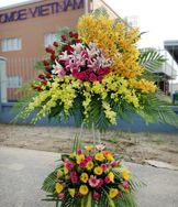 Send flowers, plants, gift baskets, and more to that special someone in your life and warm their hearts. Dienhoa24gio.com offers a large selection of affordable online floral bouquets, gift baskets, and balloon bouquets for delivery today, or for a date in the future.