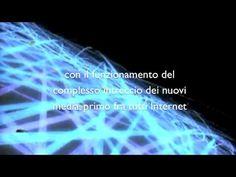 video intelligenza collettiva