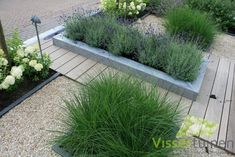 mixture of decking and shingle Strakke & Robuuste voortuin Front Gardens, Small Gardens, Outdoor Gardens, Modern Gardens, Modern Landscaping, Backyard Landscaping, Landscaping Software, Dream Garden, Home And Garden