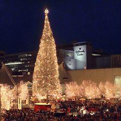 Mayor's Christmas Tree - Crown Center KCMO