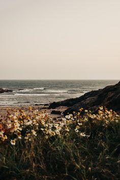 Anglesey, Caribbean Sea, Beaches, Wanderlust, Ocean, Mountains, Water, Photography, Travel