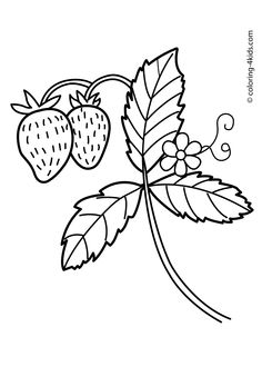 strawberry nature coloring page for kids printable free