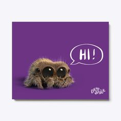 Lucas The Spider Canvas Wall Art Purple T-Shirt Front