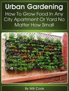 Urban Gardening: How To Grow Food In Any City Apartment Or Yard No Matter How Small (Growing Indoors, On Rooftop , Small Yards, Balcony Gardens, Planting In Containers, Aeroponic Gardening Systems):Amazon:Kindle Store