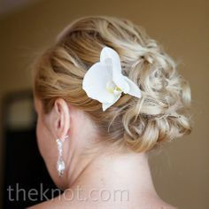 Simple Orchid in an elegant updo. Classic