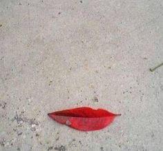 Marilyn leaf