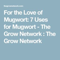 For the Love of Mugwort: 7 Uses for Mugwort - The Grow Network : The Grow Network