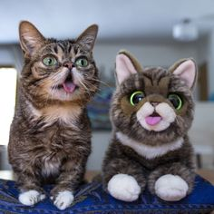 Image of Your Very Own BUB (Plush Toy)