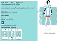 Pantone 2016 Limpet Shell