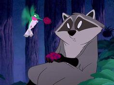 Name Pocahontas' tame raccoon.