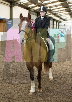 Topthorn A Winter's Mini Showjumping Competition 24th January 2015 http://www.andymerzphotography.com/topthorn-a-winter-s-mini-showjumping-competition-24th-january-2015.html