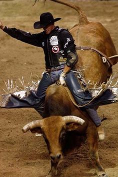 attend a PBR event. Been to rodeos just not the PBR. Rodeo Cowboys, Real Cowboys, Cowboys And Indians, Rodeo Events, Professional Bull Riders, Bucking Bulls, Rodeo Life, Rough Riders, Bull Riding