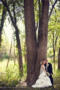 Victoria Anne Photography | tree