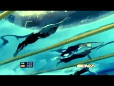 Michael Phelps all 19 olympic medals video