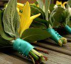 Carolyn May's Flowers  mayflowersutah.com