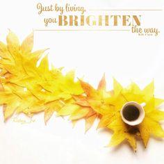 💫buongiorno💫 anche la  stella⭐️cometa  è arrivata  B⃣uona Befana a tutti👵🏻😝⭐️ #instamamme #thewomoms_gennaio #mammaiutamamma #paroladimamma #ealloraamiche #alenikiali #womoms_official #lovers_home4 #loves_foods_ #loves_details #moka_lovers #igcoffee #coffeeshotsrock #colazioneitaliana #coffee_inst #jj_coffeebreak #snap_ish #Arte_Criativa #home_manufacturer #creativemamy #tv_living #9vaga_food9 #9Vaga_ShabbySoft9 #cattura_istanti #rhonnadesigns #our_everday_moments #stellacometa