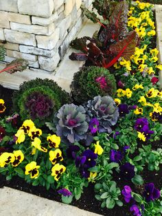 Fall landscaping , front entrance to a subdivision