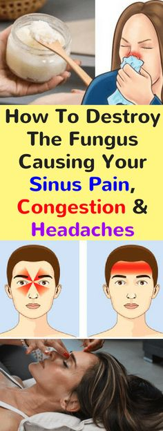 Sinusitis, an inflammation of the nasal sinuses, is a common issue that affects over 37 million Americans. This chronic issue can seriously lower the quality of life, and it is often treated with antibiotics, but they fail to provide long-term effects.  The American Academy of Allergy, Asthma & Immunology reports that sinusitis is one …