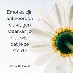 000-NL