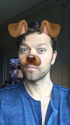 Misha Collins Daily @dailymishapics WHERE CAN I ADOPT THIS PUPPY