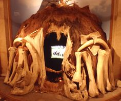 stone age man also made shelter out of animal skins bones and rocks. Stone Age Animals, Stone Age Man, Bone Crafts, Bronze Age, Archaeology, Arts And Crafts, African, Shelter, Rocks