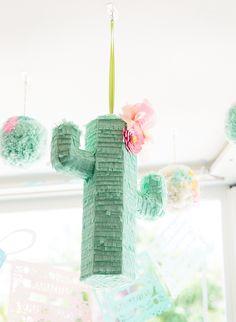 Fun & Playful Cactus
