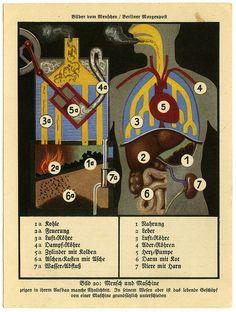 Bild 20: Mensch und Maschine Internal Affairs, Baseball Cards