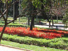 Parque Municipal de BH: um lugar para se conhecer.