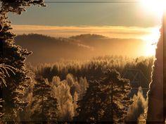 Uutissilmä: 17.12.2010, Kyllä Suomen luonto on kaunis. Säynätsalon maisema