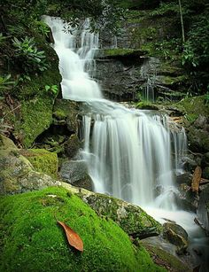 The beautiful Falls of Fox Branch, located in Ansted, WV. Beautiful World, Beautiful Places, Beautiful Pictures, West Virginia Waterfalls, Mountain States, Beautiful Waterfalls, Nature Photos, Places To See, National Parks
