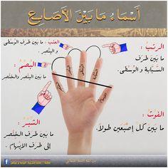 اسماء ما بين الأصابع