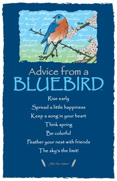 Find inspiration in nature with Advice From a Firefighter, Advice From a Park Ranger, and other inspirational bookmarks. Shop Your True Nature today. Animal Spirit Guides, Spirit Animal, Pretty Birds, Beautiful Birds, Beautiful Drawings, Bluebird House Plans, Blue Bird Art, Bluebird Tattoo, Bird Quotes