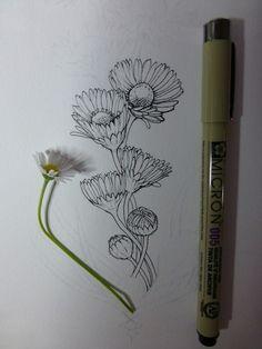 Flower Art Drawing, Flower Line Drawings, Flower Sketches, Floral Drawing, Botanical Drawings, Botanical Art, Botanical Illustration, Ink Pen Art, Ink Pen Drawings