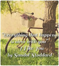 I Like You by Sandol Stoddard